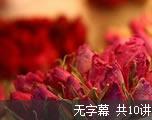 申请文书写作(无字幕)