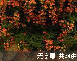 学习英语习语(无字幕)