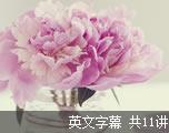 高级英语学习教程(英文字幕)