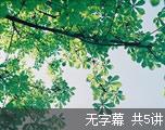 新GRE语文题之完型填空(无字幕)