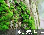 新概念英语第三册(中文授课)