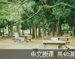 新概念英语第四册(中文授课)