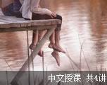 新东方商务英语(中文授课)