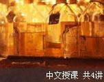 CET6精讲(中文授课)