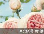 新GRE考试考前冲刺(中文授课)