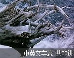 雅思单词记忆(中英文字幕)
