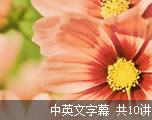 TED演讲集:撩人幻像(中英文字幕)