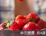 外语网CET-6综合备考教程(中文授课)