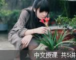 星火大课堂 CET-4 听力技巧讲解 (中文授课)