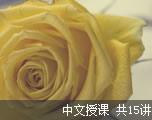 英语六级历年真题解析集合(中文授课)