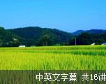 乡村音乐集锦