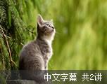 动物大预警-动物震前征兆