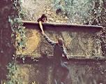 经典影视金曲专辑(三) 06-《罗密欧与茱丽叶》主题曲 A Time For Us