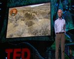改变荒漠现状,扭转气候变化